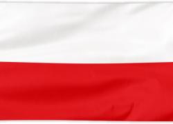 """""""Operacja na duchu Polski"""""""